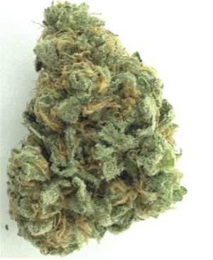 Buy Blue Dream Online