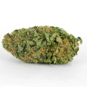 Northern Lights Marijuana For Sale